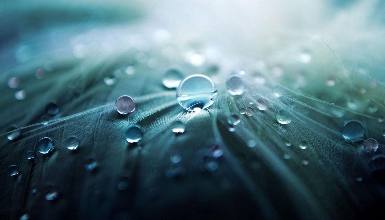 Seien Sie clever und nutzen Sie Regenwasser effizient